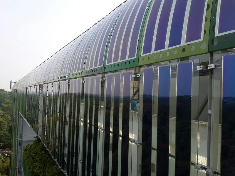 szerves napelem
